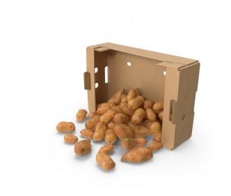 Holland Potato China