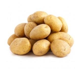 Holland Potato Washed China
