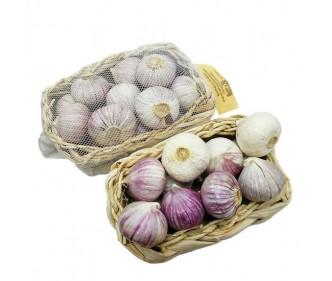 Purple Garlic China