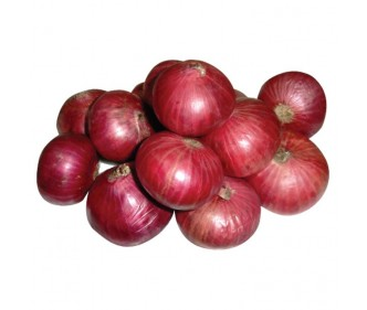 Red Onion India