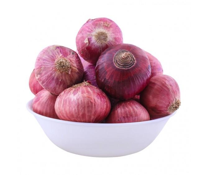 Red Onion Pakistan