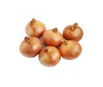 Yellow Onion Australia