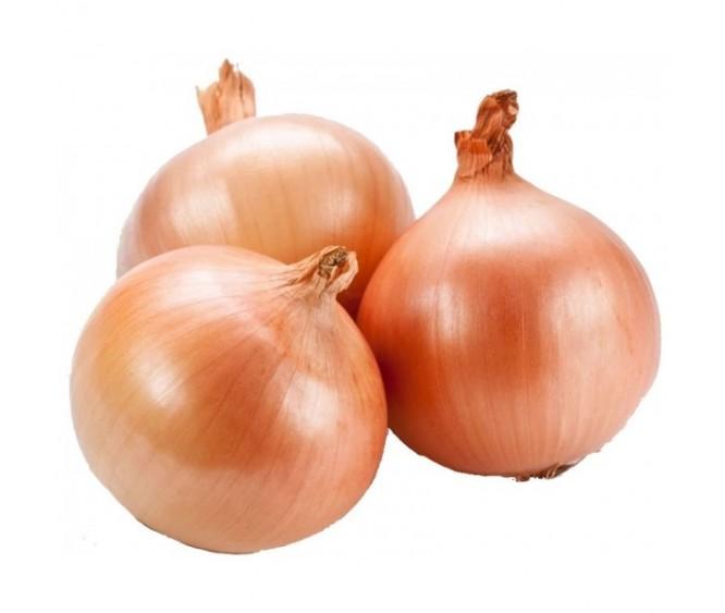 Yellow Onion China